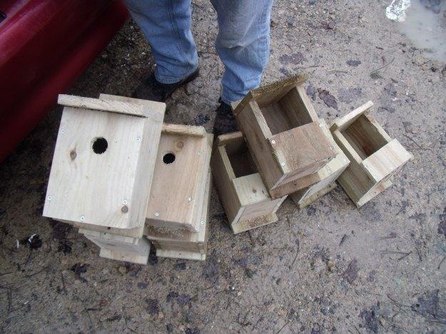 Bird+boxes-Compton+Verney